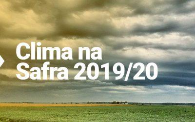 Timing do plantio pode garantir o sucesso da safra 2019/2020