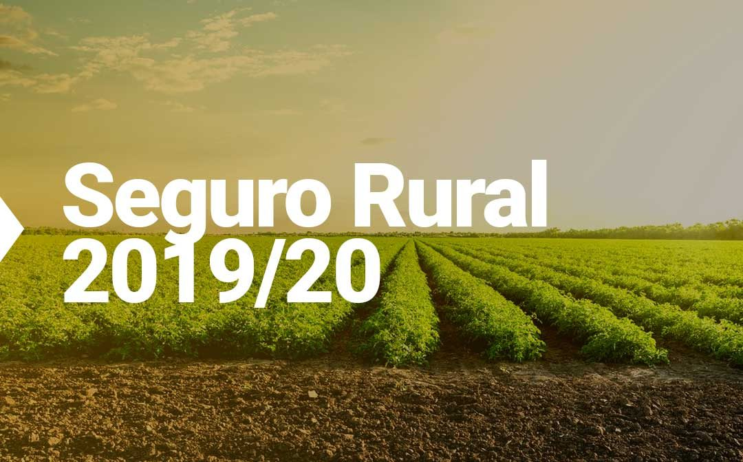O real impacto do aumento do Seguro Rural em 2019/20