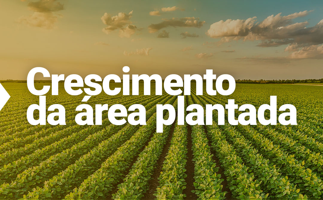 Conheça os motivos do aumento da produção do agro no Brasil