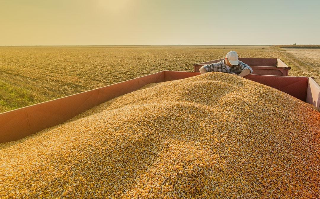 Tecnologia reduz riscos de investimento no agro