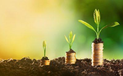Crescimento do PIB do agro deve chegar a 1,9% em 2020