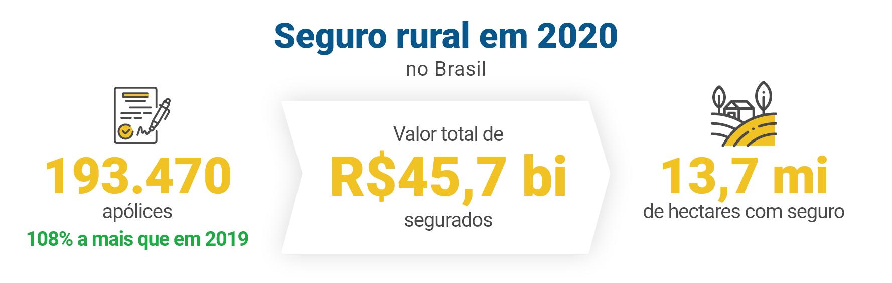 Seguro rural em 2020