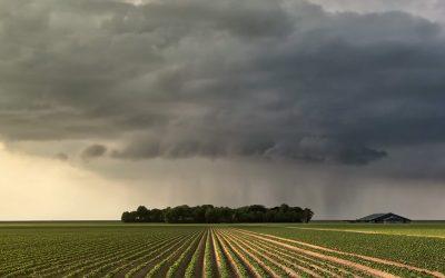 A importância de reduzir riscos no agronegócio