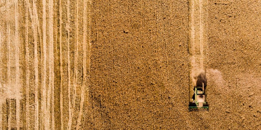 Com o crédito rural você consegue financiar a compra de terra.
