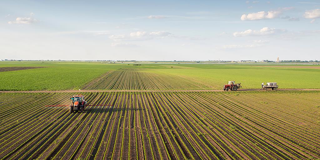 Pronaf, fazendo da agricultura familiar um grande negócio!
