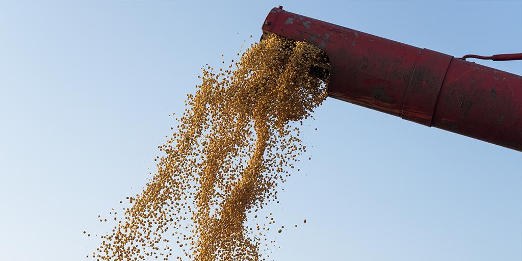 Com o Financiamento Agrícola justo e rápido, você consegue o limite que precisa para sua safra nunca parar!