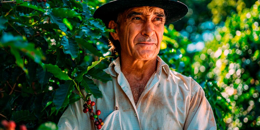 O produtor não precisa para a produção, existe uma saída: Financiamento Produtor Rural.
