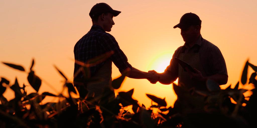 O Pronaf investimento é uma modalidade em que fomenta o desenvolvimento da agricultura familiar.
